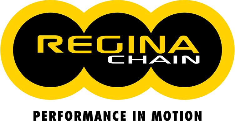 <span>Regina</span> - Industrielle Förderkette